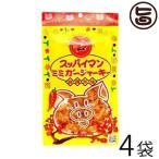スッパイマン ミミガージャーキー 25g×4袋 沖縄 人気 定番 土産 おつまみ 珍味  送料無料