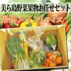 美ら島野菜果物お任せセット 果物メインL 条件付き送料無料 沖縄 土産 人気 南国フルーツ 野菜