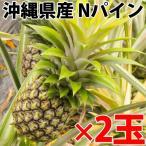 期間限定 沖縄県産 Nパイン 約0.9kg×2玉  送料無料 沖縄 人気 南国フルーツ 希少