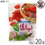 梅塩トマト 30g×20P 送料無料 ドライトマト 人気 お土産 沖縄 夏バテ防止