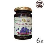 有機ブルーベリーソース 150g×6瓶 パナベリーファーム 島根県 完熟ブルーベリー使用 スーパーフード アントシアニン 無添加 無着色 送料無料