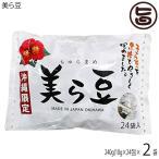 美ら豆 (大)  270g(10g×27包)×2袋 送料無料 沖縄 おつまみ 人気 土産
