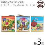 ドロップ缶 3種×各3缶 ジーエー 沖縄 土産 人気 ドロップス おまけ付き 缶 トロピカル キャンディ  送料無料