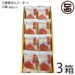 ギフト 琉球T&P合同会社 万果酥(まんごーすー)小箱 8個入り×3箱 沖縄土産 お土産 お菓子 人気 送料無料