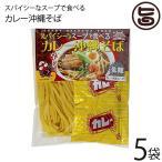 スパイシーなスープで食べるカレー沖縄そば 118g×5P 琉津 生麺 スープ付き お手軽 便利 沖縄 土産 珍しい  送料無料