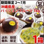 期間限定 2〜7月 元築地の目利きの達人が選ぶ 沖縄県産 パッションフルーツ 1kg×1箱 送料無料 南国フルーツ 果物
