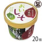 おいしそアイスカップ 120ml×20個(1ケース) さめうらフーズ 高知県 汗見川栽培 赤シソ・大葉の爽やかな ご当地アイス 香料・着色料不使用 条件付き送料無料
