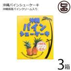パインシューケーキ(小)×3箱 タイラ 沖縄 土産 パイナップル お菓子 一口サイズ 個包装  送料無料
