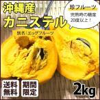 沖縄県産 カニステル 2kg エッグフルーツ 不思議な美味しさの追熟果物 沖縄 果物 人気 フルーツ お土産 珍フルーツ  条件付き送料無料