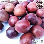 期間限定 2〜7月 トロピカルフルーツの代表 沖縄県産パッションフルーツ 1kg 沖縄 人気 南国フルーツ 希少 土産  条件付き送料無料