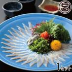 浜名湖うなぎの刺身 自宅用 魚魚一(とといち) 静岡県 土産 国産ウナギ さしみ 鮮魚 ご家庭用に 送料無料