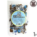 塩黒糖菓子 200g×1袋 沖縄 人気 定番 土産 お菓子  送料無料