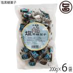 塩黒糖菓子 200g×6袋 沖縄 人気 定番 土産 お菓子  送料無料