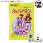 スッパイマン 梅キャンディー 5個入×8袋 沖縄では定番の乾燥梅干 梅の風味に絶妙な甘さ 熱中症対策や沖縄土産にも  送料無料