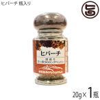 ヒバーチ 瓶入り 20g×1瓶 沖縄 人気 調味料 胡椒 土産 ヒハツ ヒハツモドキ  送料無料