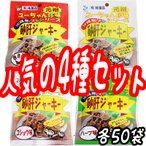 砂肝 ジャーキー13g4種×10袋×各5袋セット 送料無料 沖縄 人気 土産 おつまみ 珍味