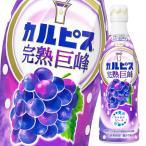 【送料無料】アサヒ カルピス 完熟巨峰470mlプラスチックボトル×1ケース(全12本)