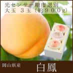 岡山県産 白鳳 3玉 光センサー糖度選別