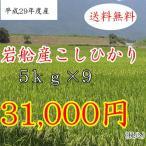 【送料無料】平成29年度産  新米岩船産こしひかり5キログラム×9