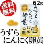 うずらにんにく卵黄 62粒 国産 送料無料 お取り寄せ