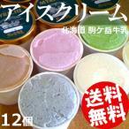 ショッピングアイスクリーム アイスクリーム ギフト 詰め合わせ 12個 駒ケ岳牛乳 北海道 国産 送料無料 贈答品 お取り寄せ