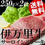 牛肉 ステーキ 黒毛和牛 サーロイン バーベキュー 伊万里牛 250g×2枚 送料無料 贈答品 お取り寄せ