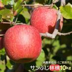 リンゴ りんご 林檎 サンふじ ふじ フジ 産直 ご家庭用 信州小布施産 サンふじ林檎10kg 送料無料 減農薬栽培 蜜  発送は12月20日頃まで。