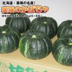 かぼちゃ カボチャ 南瓜 北海道美瑛産 坊ちゃんかぼちゃ約3kg(約5〜8玉) 送料無料 北海道より直送 減農薬栽培