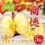 ご贈答用 福島産 高徳りんご5kg(15〜25玉)【送料無料】  ※ご贈答 こうとく 林檎 リンゴ りんご 蜜