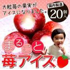 いちご 苺 イチゴ まるごと苺アイス 20粒 大粒の果実がまるごとアイスに♪【送料無料】