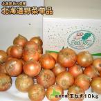 玉ねぎ 玉葱 タマネギ たまねぎ 富良野産 新玉ねぎ約10kg(M〜2L)【送料無料】北海道fより直送 ※減農薬栽培