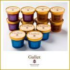 ショッピングアイスクリーム 父の日に ガレープレミアムアイスクリーム12個セット