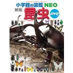 小学館の図鑑NEO 昆虫 DVDつき