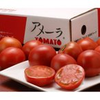 トマト とまと アメーラトマト 静岡・長野県産 3S〜2L 約900g (7〜23玉入)