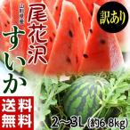 西瓜 スイカ すいか 送料無料 山形県産 尾花沢すいか 訳あり 2L〜3L 約6.8kg