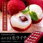 宮崎県産 生ライチ 約420g(9〜15玉) 化粧箱入り 冷蔵 ギフト 贈り物 贈答 送料無料