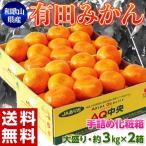 みかん ミカン 蜜柑 和歌山産 手詰め 有田みかん 2Lサイズ 約3kg×2箱 (計約6kg)  送料無料