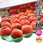 桃 もも 福島県産 伊達の桃 特秀品 13〜22玉 約5kg 送料無料