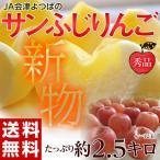 JA会津よつばのサンふじりんご 約2.5キロ(7〜12玉)秀品 ※常温/送料無料