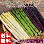 『アスパラガス3色セット』(グリーン・ホワイト・紫)各約200g 福島・会津産※冷蔵/送料無料
