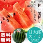 すいか スイカ 西瓜 千葉 富里産 甘太郎 (かんたろう) スイカ 1玉 3L 約8kg A品 常温 送料無料