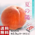 《送料無料》高橋忠吉さんの希少品種桃「夏の陽(なつのよう)」約2.5kg※常温(8〜12玉入)