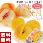 菱沼さんの桃『桃水&光月』 福島産 約2kg(8〜9玉入)※送料無料