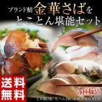 Other - お中元 御中元 ギフト 送料無料 さば サバ 鯖 金華さば ブランド鯖 金華さばをとことん堪能セット 冷凍