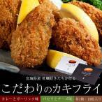 宮城県産 牡蠣好きたちが作る「こだわりのカキフライ」2箱セット(1箱:カレーとガーリック味、1箱:パセリとチーズ味) 各1箱:10粒入り ※冷凍