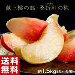 《送料無料》福島県桑折町 献上桃の郷 特選「雅」 約1.5kg(5〜6玉)※常温