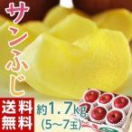 りんご リンゴ 林檎 長野・安曇野産 サンふじ 約1.7kg(5〜7玉) 送料無料
