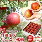 りんご 林檎 リンゴ 産地応援 台風キズサンふじ 約4.5kg 目安として14〜20玉 長野県上田産 送料無料 常温
