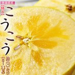 青森産『こうこう』りんご 約3キロ(8〜11玉)【特A】※3箱まで送料1口で配送
