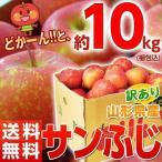 りんご リンゴ 林檎 山形産 訳あり サンふじ バラづめ 約10kg(梱包込重量) 26〜54玉 ご自宅用 送料無料